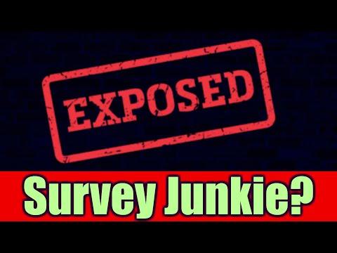 Umfrage Junkies Bewertungen! Für Online-Umfragen bezahlt werden? Was die Leute über Umfrage-Junkies sagen